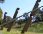 Balancing Fence Line